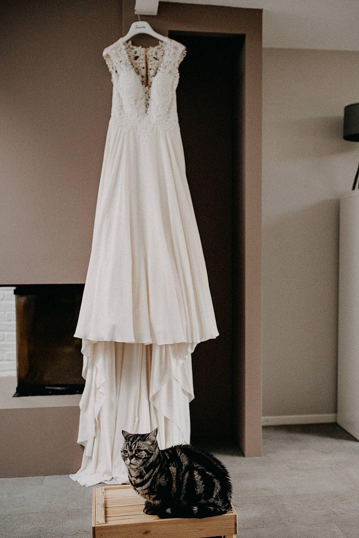 bruidsjurk met Britse korthaar kat
