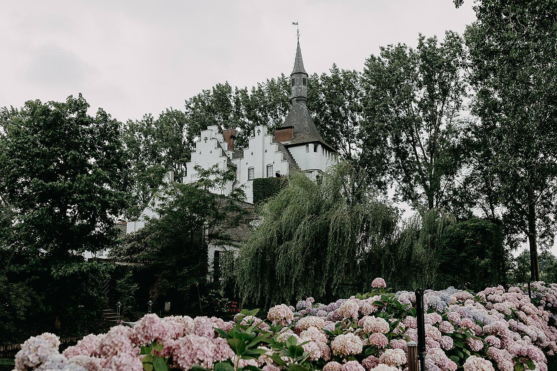 Roze Hortensia tuin kasteel