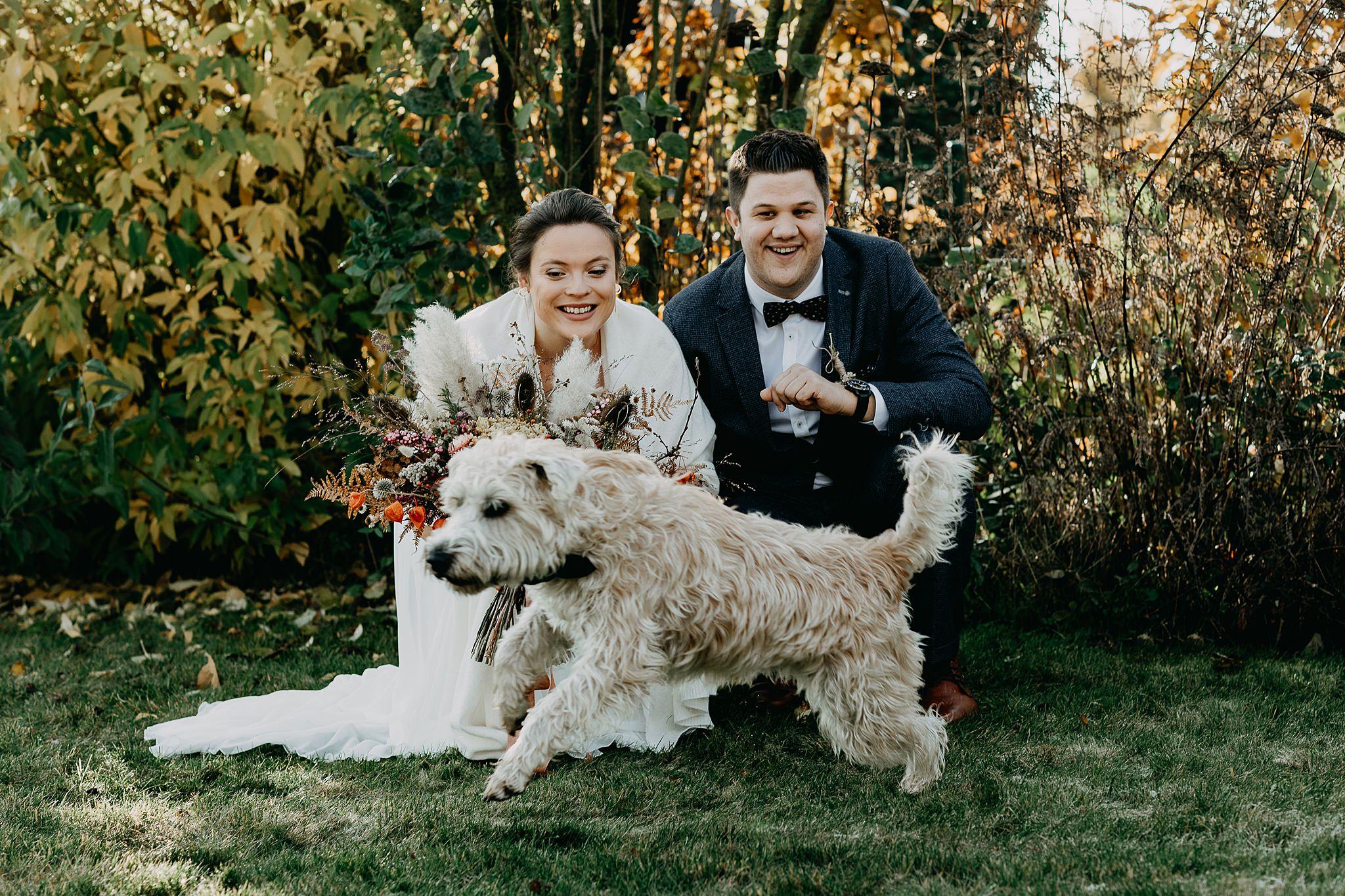 bruidspaar met poedel hond