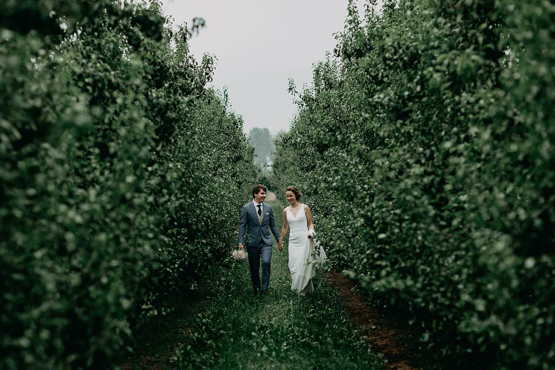 bruidspaar tussen rijen appelplantage
