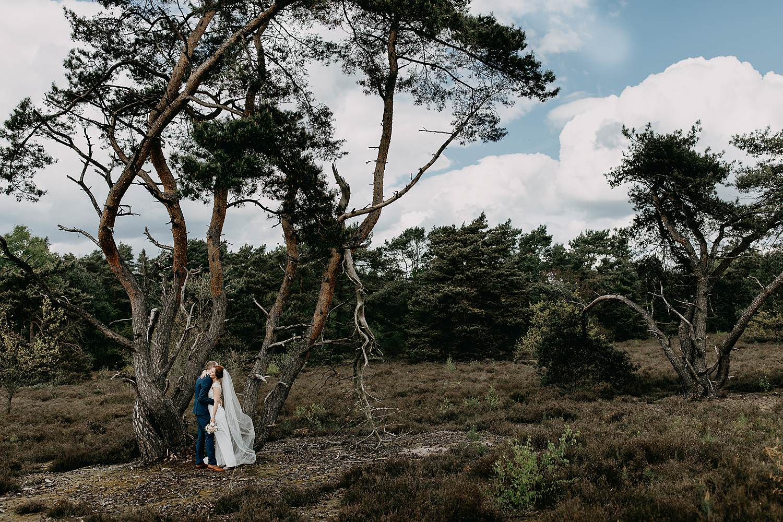 De Teut Zonhoven bruidspaar bij boom