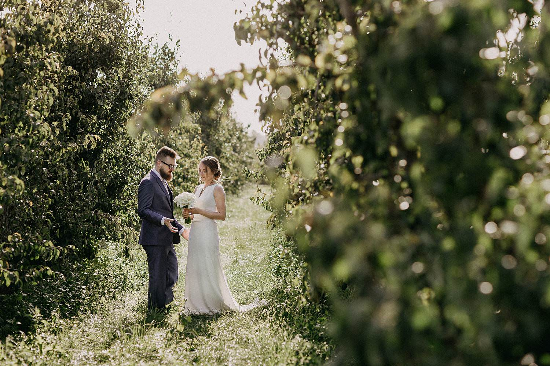 Zepperen huwelijk bruidspaar in fruitplantage