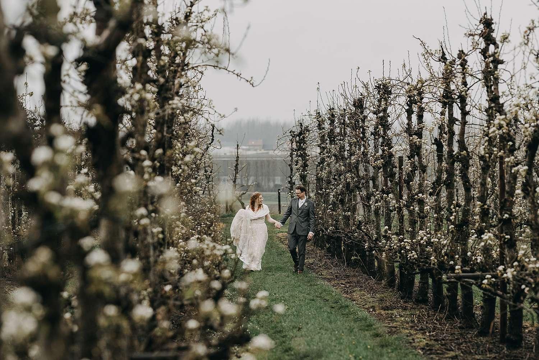 Bruidspaar in appelbloesems in Borgloon